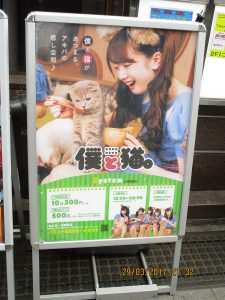 Sign advertising a cat cafe with a girl feeding a cat